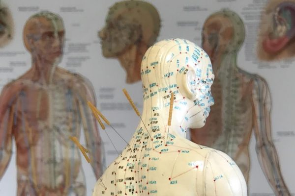 Akupunktur-Praxis-Dr-Huber-Hollenthon (3)